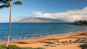 Global Wellness Day in Wailea
