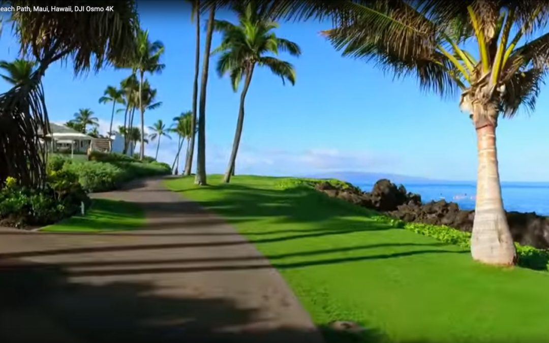 Take a Virtual Tour with Us on the Wailea Beach Walk