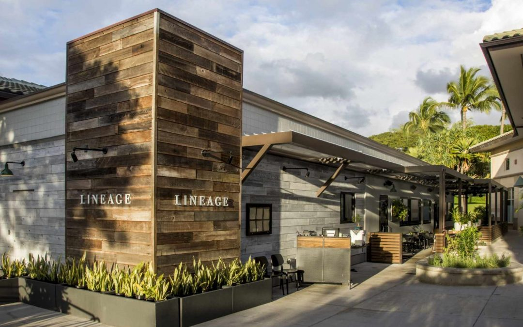 LINEAGE Restaurant Re-Opens for Dine-in August 1