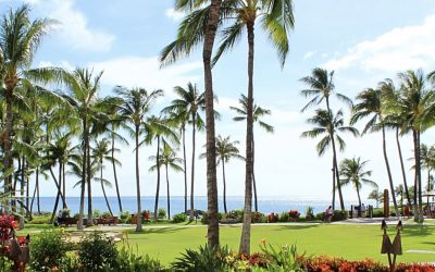 Wailea Re-Opening News
